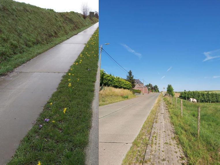 Een reeds aangelegd nieuw fietspad aan de Waversesteenweg en een nog nieuw aan te leggen fietspad in Outgaarden