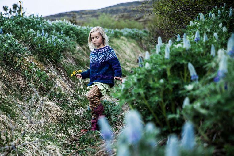 Dochter Lilly (7): Het leukste zijn de lammetjes, die zijn zoooo lekker. Beeld Marlena Waldthausen