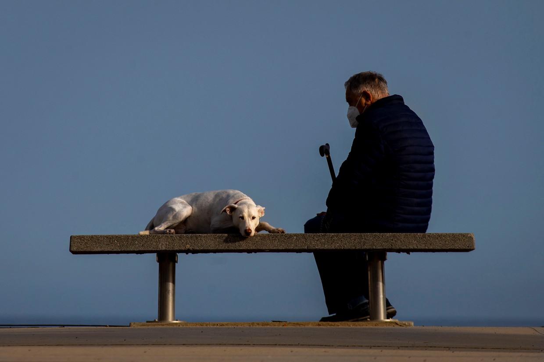 Een man met zijn hond op een bankje in de Spaanse stads Barcelona. Beeld EPA