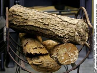 Athene wil houtverbranding in kachels aan banden leggen