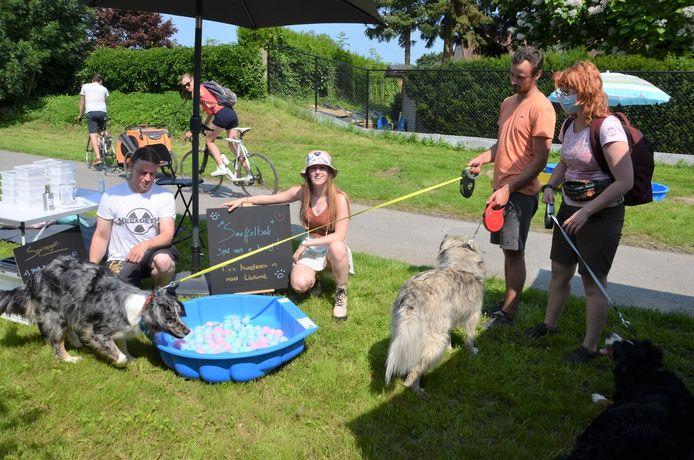 Magalie laat honden snuffelen in een ballenbad met lekkere korrels.