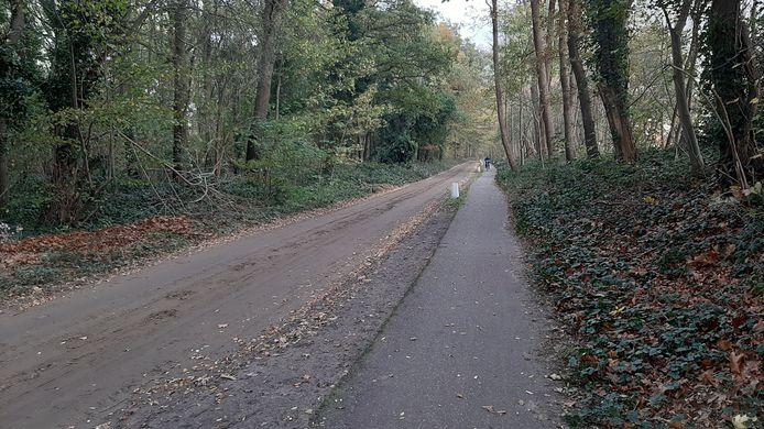 Langs de kant van dit bospad in het buitengebied van Teteringen werd op eerste kerstdag 1990 de gruwelijke ontdekking gedaan.