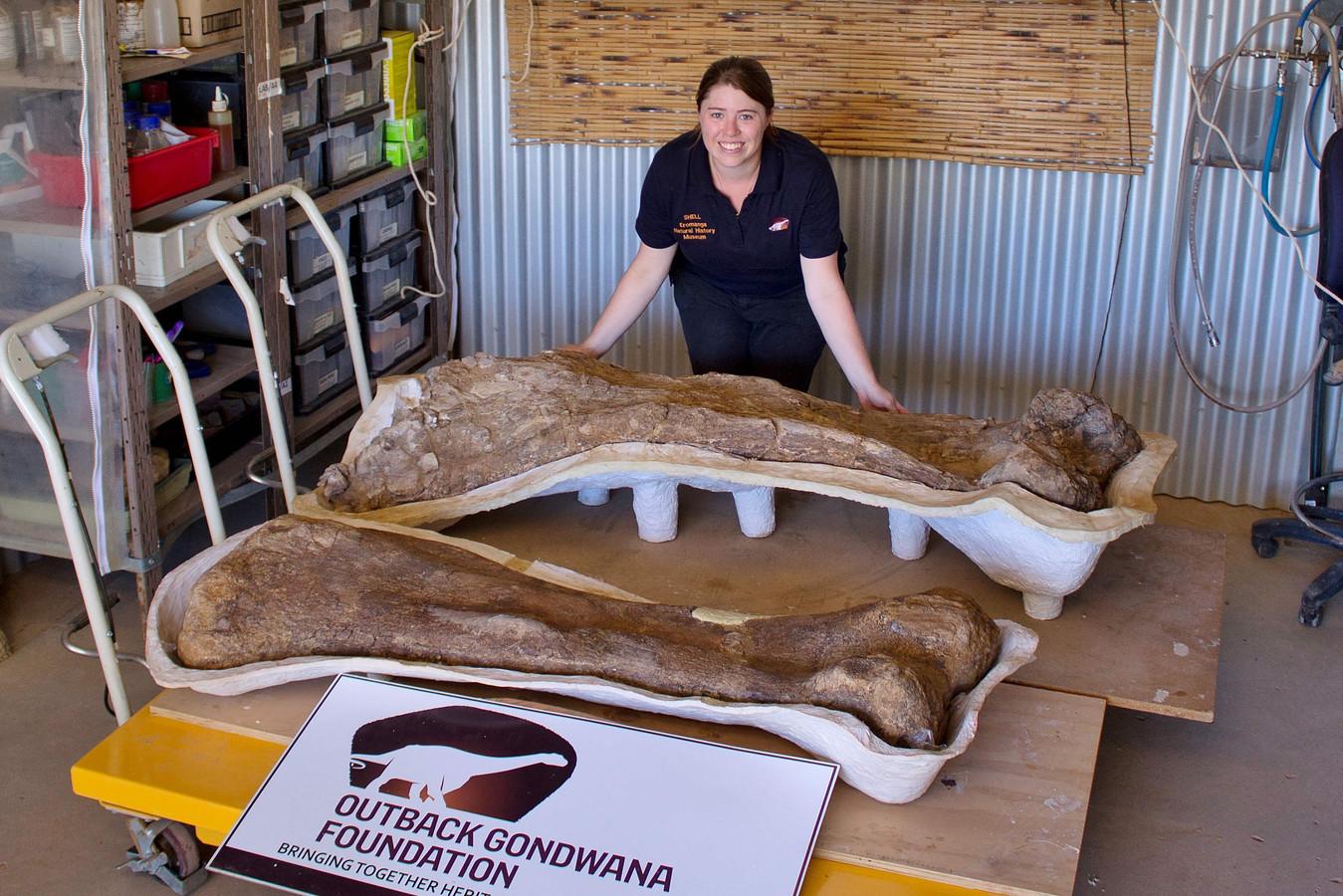 Paleontoloog Rochelle Lawrence met botten van de Australotitan cooperensis.