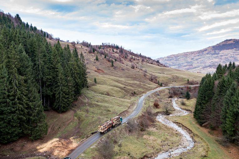 Een vrachtwagen volgeladen met gekapte bomen rijdt door de bossen van de provincie Maramures. In Roemenië gaat jaarlijks een bos zo groot als de halve provincie Limburg tegen de vlakte.  Beeld Julius Schrank
