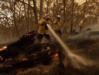 Bosbranden in Australië eindelijk onder controle