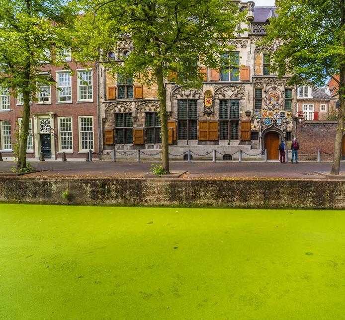 Het Gemeenlandshuis van Delfland, de zetel van het hoogheemraadschap, aan de Oude Delft in Delft.