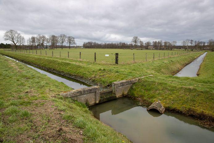 Een stuw in een sloot in het landbouwgebied nabij de Sallandse Heuvelrug staat hoog om regenwater en grondwater langer vast te houden.