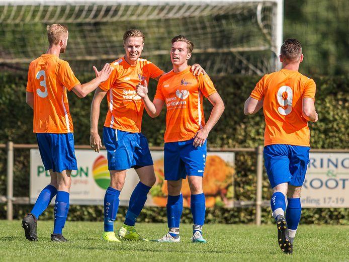 SV Dedemsvaart (foto) wil samen met plaatsgenoot SCD'83 één prestatie-elftal hebben.