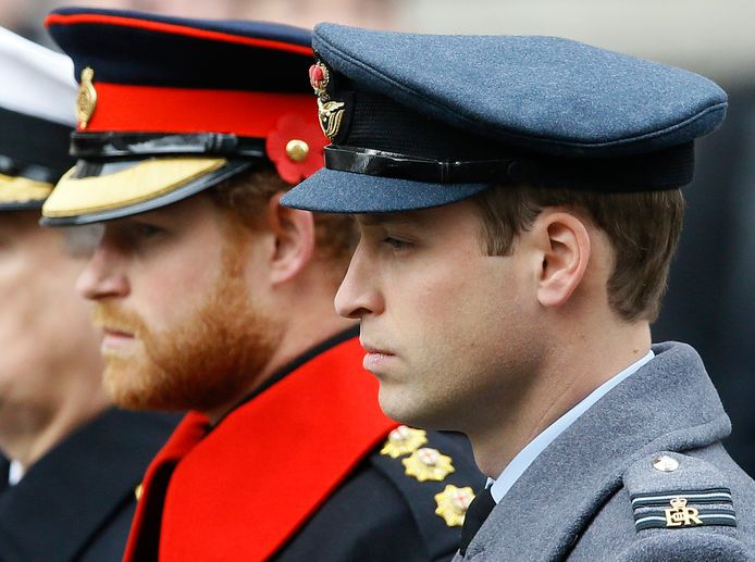 William en Harry zullen apart lopen.