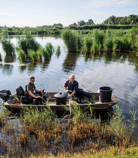 Miljoenen naar project om wateroverlast en verdroging te voorkomen in Twente
