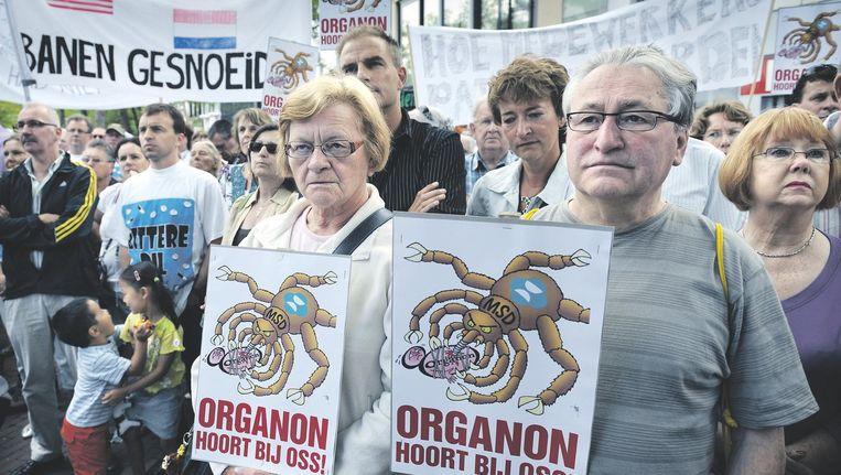 Ossenaren manifesteerden zich zaterdag uit solidariteit met de werknemers van MSD (het voormalige Organon) die hun baan verliezen. Beeld Marcel van den Bergh/ de Volkskrant