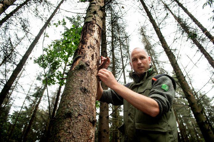 Laurens Jansen, boswachter bij Staatsbosbeheer. Foto archief