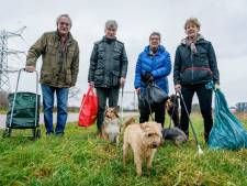 Van wietzakjes tot condooms: op pad met de 'honden-afvalbrigade' in Hengelo