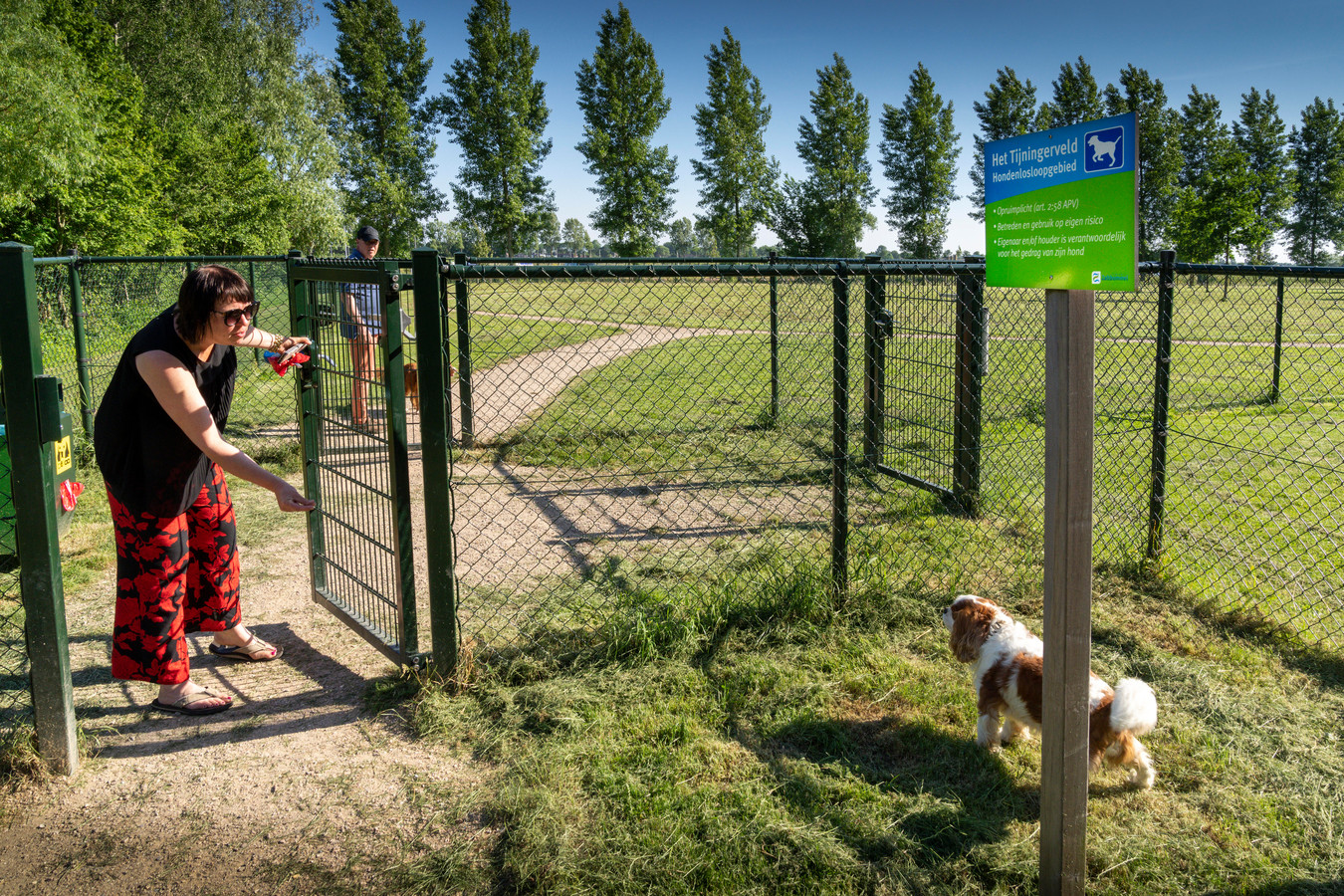 Hondenuitlaatplaats bij de Tijningenplas in Zaltbommel