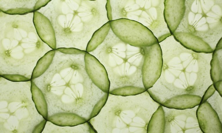 Nationale Komkommerdag: 9x komkommertips