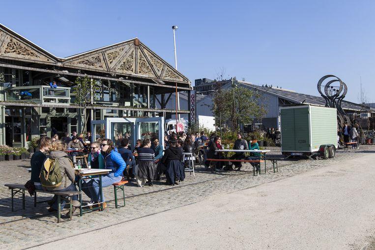 Bar Paniek Beeld Eline Ros