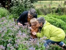 Opa's en oma's willen voor hun kleinkinderen betere landbouw, zonder CO2 en kunstmest: 'Gezond voor onze natuur én voedsel'