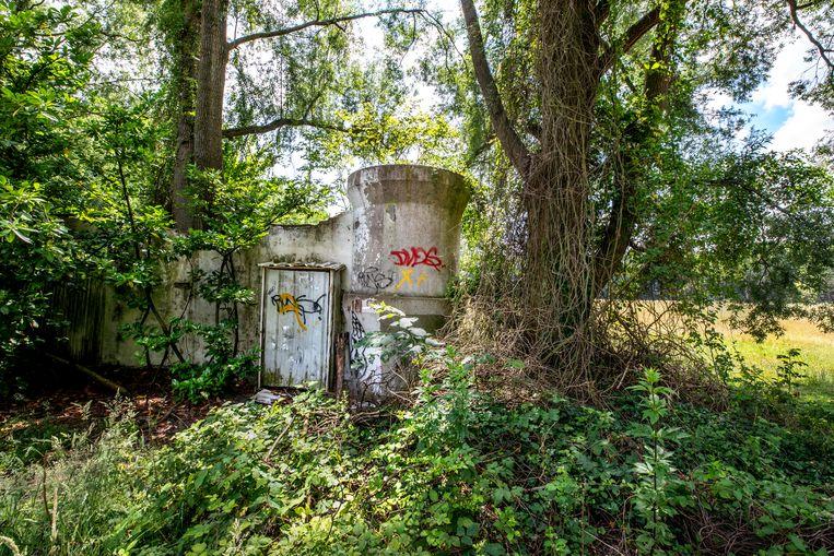 Sinds de sluiting van het Land van Ooit neemt de natuur het gebied weer over. Beeld Raymond Rutting / de Volkskrant