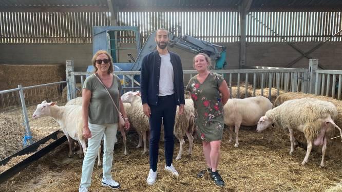 Staatssecretaris Mahdi op bezoek bij Het Nijswolkje naar aanleiding van de dag van de landbouw