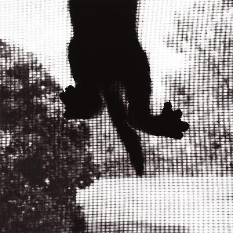 Climbing cat, 1983, door Ron Evans – Bridgeman Images. Beeld Ron Evans – Bridgeman Images