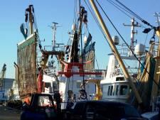 Voor bijna alle Zeeuwse vissers stopt pulsen dit jaar
