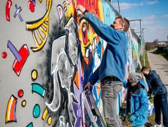 Van Ros Beiaard tot streetart: 6 themawandelingen in het Waasland en de regio Dendermonde