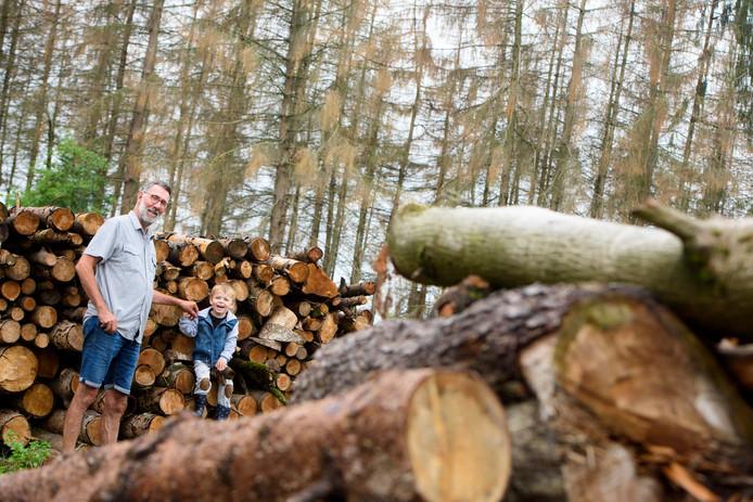 Gerwenaar Reinoud Lantman en zijn kleinzoon tussen de gekapte fijnsparren, met op de achtergrond nog meer dode bomen