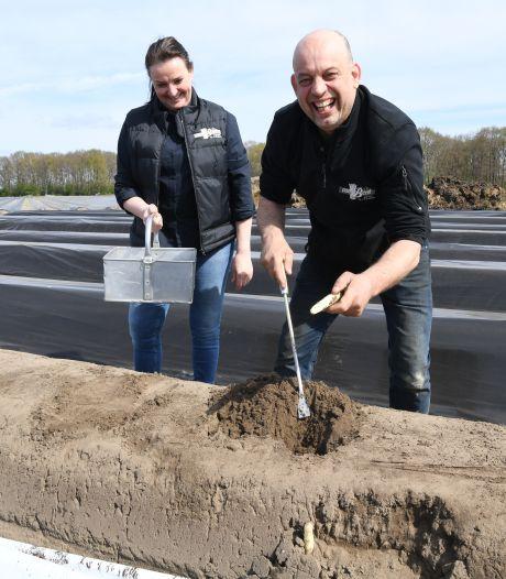 Bij Antonio en Jolanda van Beek komen duizenden kilo's van het witte goud uit de grond