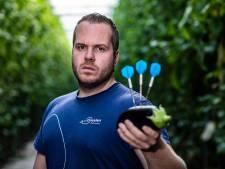 Darter Aubergenius luidt Nederlands aubergineseizoen in: 'Als ik blij ben, denk ik aan aubergines'