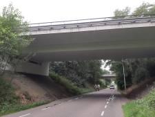 Toch bomen plat voor aanleg fietspad Tuinbouwweg