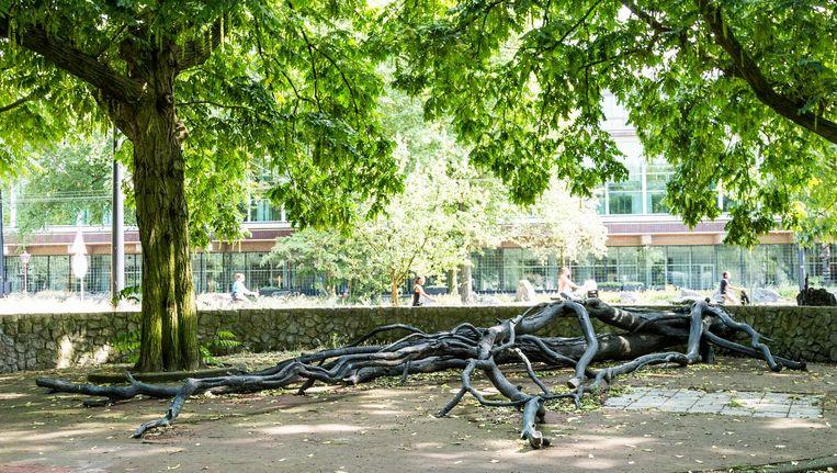 'De gevelde boom staat voor de gevallen reus,' aldus maker Fernando Sánchez Castillo Beeld Tammy van Nerum