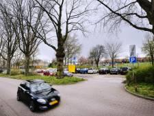 Gaat Breda monumentale bomen kappen om ruimte te maken voor parkeerplaatsen?