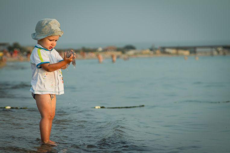 Kwallen op het strand Beeld Getty Images