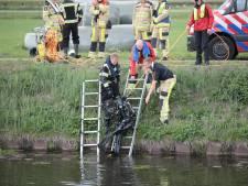 Lichaam aangetroffen in auto in kanaal is vermiste vrouw (50) uit Dedemsvaart