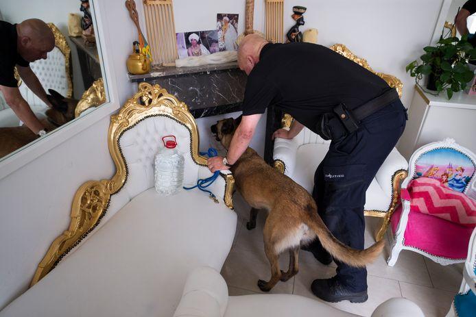 Samen met een hond zoekt een rechercheur in de Amsterdamse kapsalon naar verstopt geld.