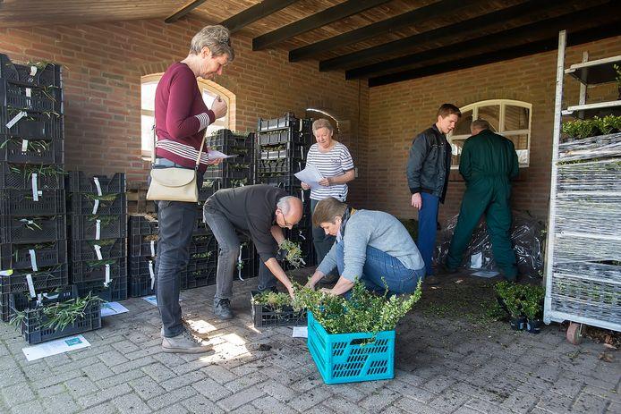 GILZE, Pix4Profs-Ron Magielse inwoners van gilze-rijen halen bestelling plantgoed op bij de fruitboogerd. de gemeente draagt helft van de kosten van de plantjes.