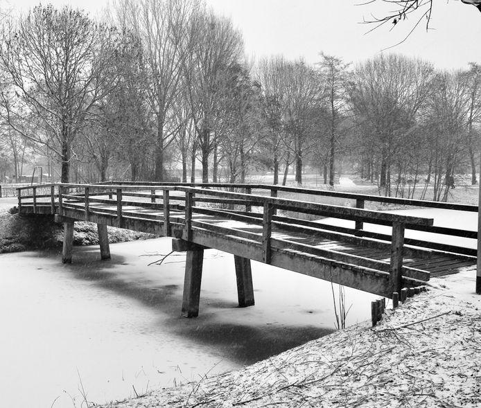 Het Bingelradepark in Arnhem (De Laar Oost).