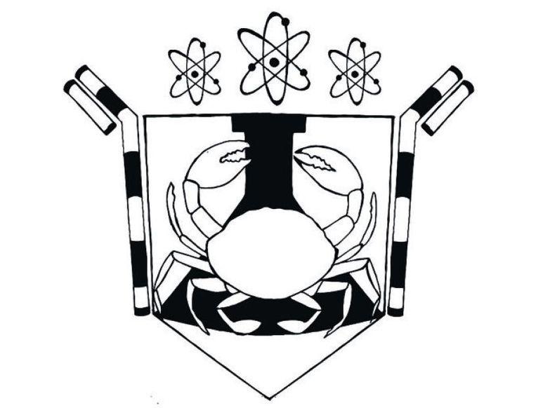 Hoe zou het familiewapen van Jack Andraka eruit kunnen zien? Illustrator Renske Karremans liet zich inspireren door zijn Levenslessen: 'Jack Andraka's liefde voor de wetenschap mag natuurlijk niet ontbreken in zijn wapenschild. Daarom zijn er in het beeld verschillende verwijzingen naar te vinden. Om het geheel wat persoonlijker te maken heb ik ook het verhaal over het krabben vangen erin verwerkt.' Beeld Renske Karremans