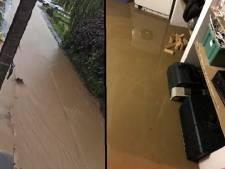 """Trois inondations en un mois à Pont-à-Celles: """"Je vous passe l'odeur"""""""