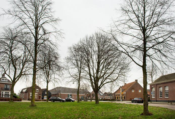 De hoek van de Houtse Heuvel met de Vrachelsestraat. De langwerpige boerderij met de groene deuren moet plaats gaan maken voor nieuwbouw waarin zes starterswoningen komen. Achter het pand zijn nog eens zes ouderenwoningen gepland.