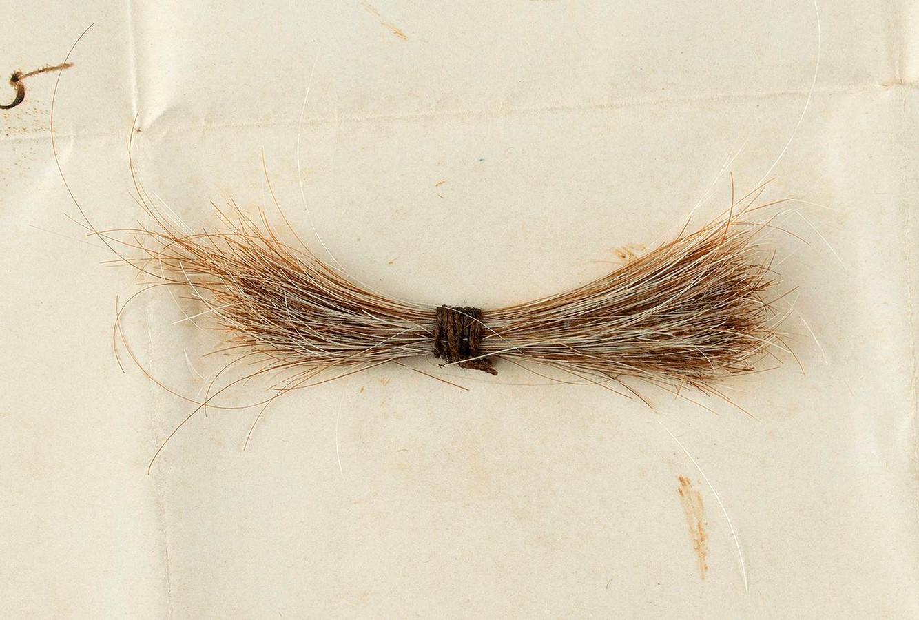 De haarlok van Lincoln ging onder de hamer in Boston