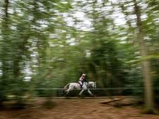 Voor het eerst het Nederlands kampioenschap eventing voor pony's op de Herikerberg in Markelo