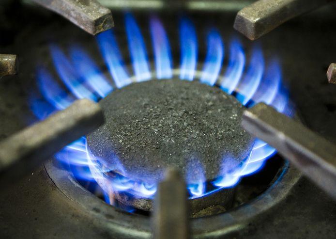 Regionale netbeheerders hebben en onderhouden het gas- en stroomnet in hun werkgebied.