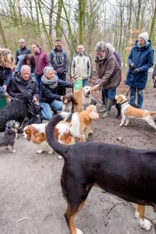 Schiedam moet bezuinigen en wil daarom stoppen met Rotterdampas en hondenbeslasting alsnog niet afschaffen