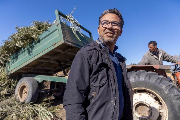 Slim Rekik is een voorbeeld van een Tunesische boer die met zijn olijfgaard is overgestapt op irrigatiebouw. Beeld Sven Torfinn / de Volkskrant