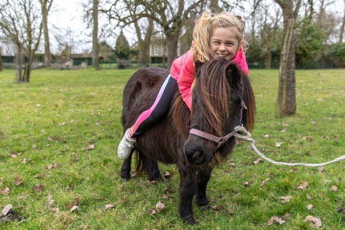 Pony Brenda in haar tijdelijke wei in Heinkenszand. Op haar rug ligt Puck Courtin