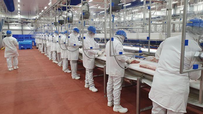 De nieuwe productielijn in de recent geopende vleesverwerkingsfabriek van Vion in Boxtel. Fotografen van buiten zijn niet welkom vanwege strenge coronaregels.