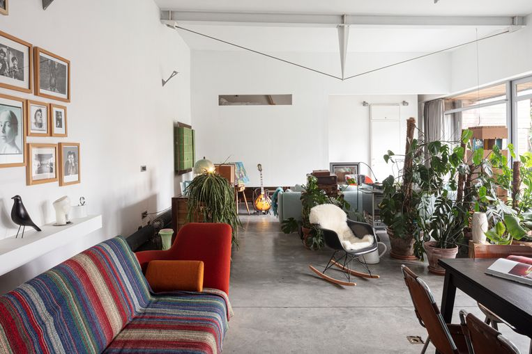 Zicht op de voormalige feestzaal van café De Sportman met een spansysteem dat de zolderverdieping ondersteunt. Vooraan: vintage stoelen ontworpen door Charlotte Perriand voor het skioord Les Arcs. Beeld Tim van de Velde