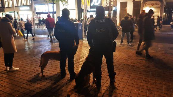 Het hondenteam werd zaterdag opnieuw ingezet om onder andere de Meir in de gaten te houden.