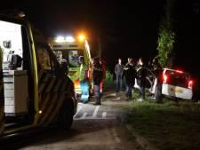 Auto botst tegen boom in Babyloniënbroek, twee gewonden naar ziekenhuis